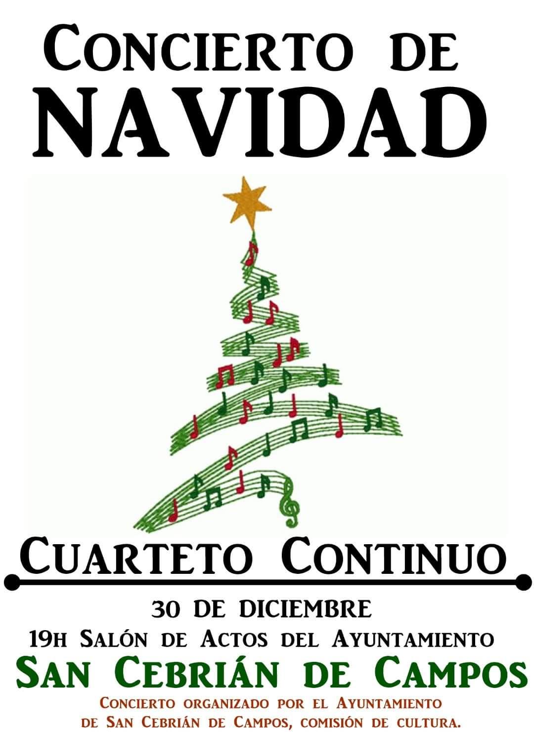 Concierto de Navidad. 30/12/2017