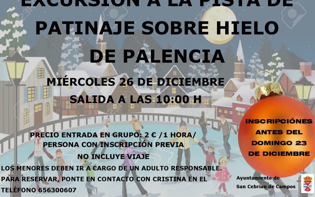Excursión a la pista de patinaje de Palencia